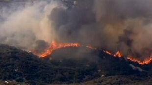 """Kalifornia w płomieniach. """"Silver Fire"""" spustoszył już ponad 6 tys. ha"""