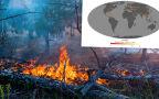 Mapa aktywnych pożarów na Ziemi (NASA)