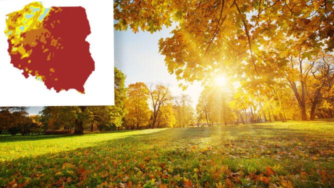 Prognoza IMGW na wrzesień. <br />Jaką pogodą zaczniemy jesień?