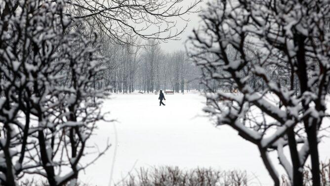 Pogoda na dziś: kolejna porcja śniegu, <br />mróz i silniejszy wiatr