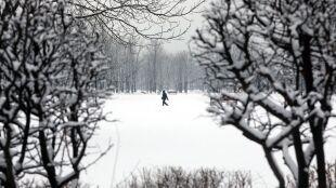 Pogoda na dziś: kolejna porcja śniegu, mróz i silniejszy wiatr