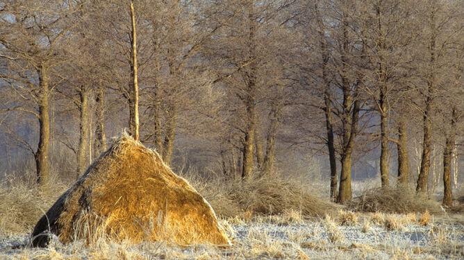 Prognoza pogody na dziś: prawie w całej Polsce będzie pogodnie