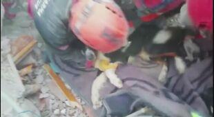 Ratownicy znaleźli pod gruzami psa