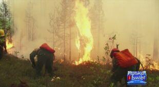 Płoną lasy na Syberii