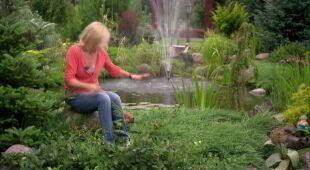 Barwny ogród ze żwirowymi rabatami (odc. 507)