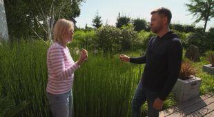 Awangardowy ogród w Wielkopolsce (odc. 739 / HGTV odc. 1 serii 2020)